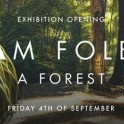 Artbay Gallery, Queenstown - A Forest by Sam Foley